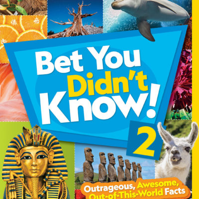 Bet You Didn't Know! 2: Outrageous, Awesome, Out-of-This-World Facts