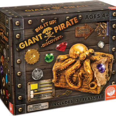 DIG IT UP PIRATE CHEST