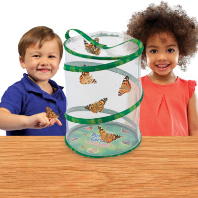 Butterfly Garden (with voucher)
