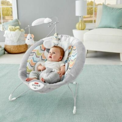 Fisher-Price® Sweet Snugapuppy™ Deluxe Bouncer